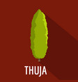 thuja tree icon flat style vector image vector image