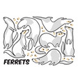 cute cartoon ferrets set in outline vector image