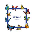 decorative butterflies flying with place vector image vector image