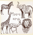 engraved savanna animals set vector image