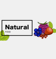 natural green food web banner vector image vector image