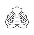 philodendron line icon concept philodendron flat vector image