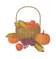 thanksgiving basket with fruit and vegetables vector image vector image