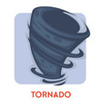 tornado isolated icon natural disaster rotating vector image