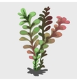 Tropical plant with color transition vector image