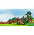 A forest with big rocks vector image vector image