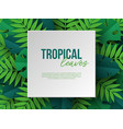 banner with exotic jungle tropical palm leaves vector image vector image