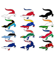 Crocodile flags vector image vector image