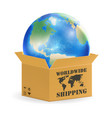 earth globe in product worldwide shipping box vector image vector image