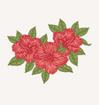 red hibiscus flowers and leaves hand drawn vector image vector image