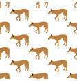 australian dingo seamless pattern vector image vector image