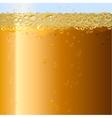 Beer background Texture of drink in glass vector image