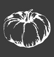 big ripe pumpkin isolated white outline sketch vector image