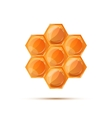 Bright glossy honeycomb with shadow on white vector image vector image