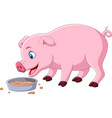cartoon pig eating on white background vector image vector image
