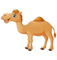 Cute camel cartoon vector image