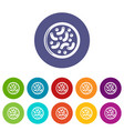 microscopic bacteria icons set color vector image