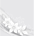 White Flowers vector image vector image