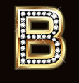 b bling vector image vector image