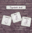 flashcard with vegetable herb mint oregano spinach vector image