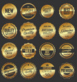luxury quality golden badge retro collection 2 vector image vector image