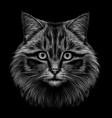 monochrome hand-drawn portrait a cat vector image