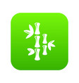 natural bamboo icon green vector image vector image