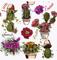 wallpaper pattern with hand drawn cactuses vector image vector image