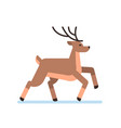 deer cartoon animal reindeer flat isolated vector image