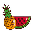 fruits fresh organic vector image vector image