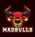 mad bulls sign and symbol logo vector image