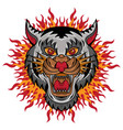 white lion head logo design vector image