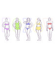 woman body shape vector image vector image