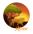african wild life and animals vector image vector image
