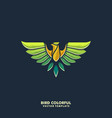 eagle colorful design template vector image vector image