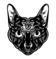 hand drawn cat character design vector image vector image