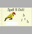 spell english word bird vector image