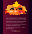 best offer autumn sale -35 advert promo poster vector image