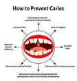 how to prevent appearance caries bad vector image vector image