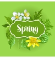 Spring green leaves and flowers Card with plants vector image