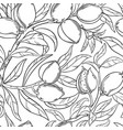 almond seamless pattern vector image
