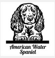 american water spaniel - peeking dogs - breed face vector image vector image