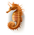 badges stickers sea horse vector image
