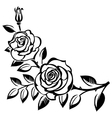 branch roses vector image vector image