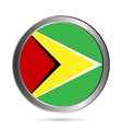 Guyana flag button vector image vector image
