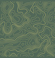 line topographic map contour elevation background vector image vector image