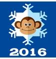 Monkey snowflake 2016 vector image