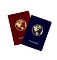 Passports vector image