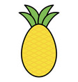 pineapple fresh fruit icon vector image