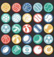 sport ball icons set on color circles black vector image